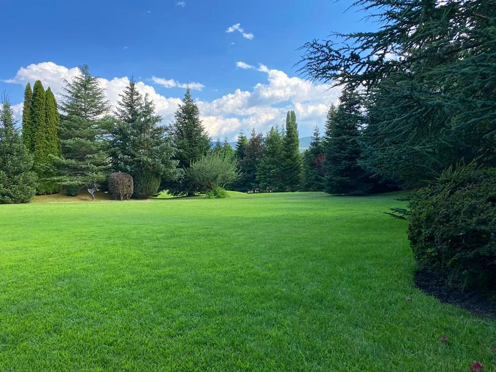 Convierte tu jardin en parte del paisaje
